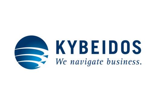 Logo Business Intelligence-Dienstleister