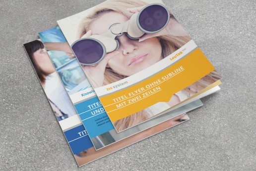 Template für Flyer der USU Software AG