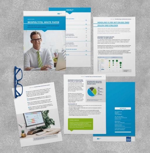Whitepaper der USU Software AG