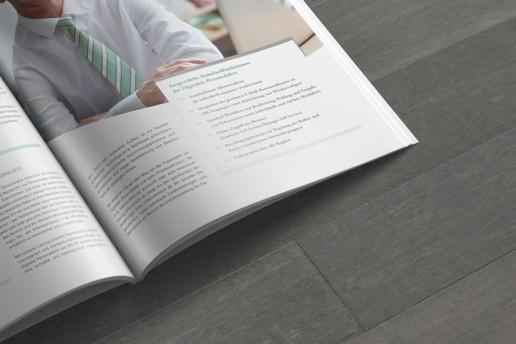 Editorial Design Beispiel: Broschüre Infokasten